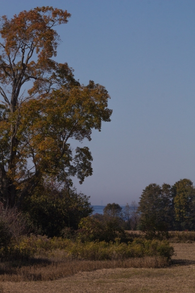 Autumn View of Lake Ontario