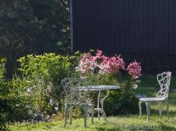 A Favourite Garden Spot